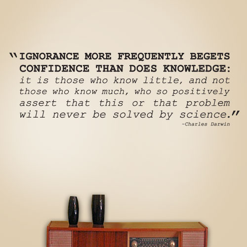 View Product Ignorance Knowledge Wall Decal